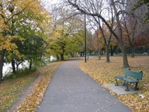 Charles River Path in Cambridge