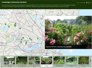 storymap, GIS, community gardens, cambridge, ma