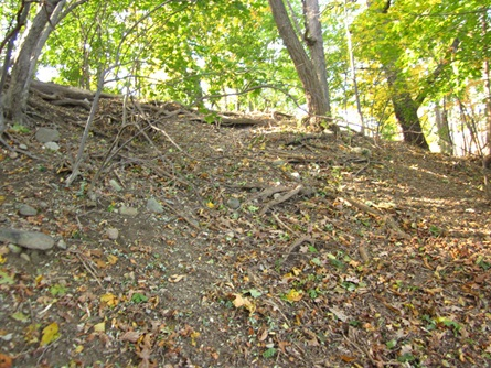 Glacken Slope before stabilization: little ground cover and high erosion velocities.