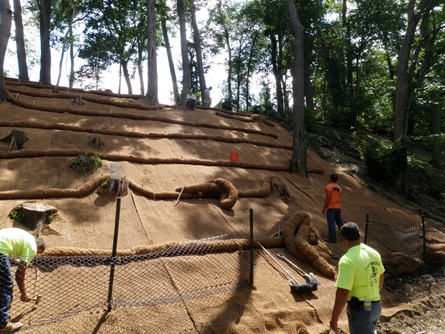 Coir logs are placed above stabilization fabric on Glacken Slope.