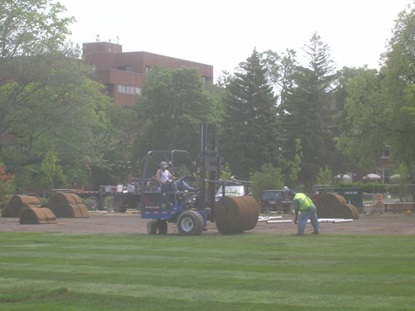 Spreading sod at Maher Park.