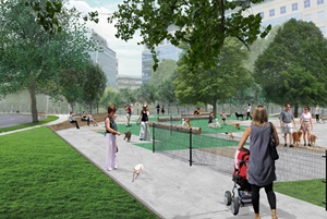 Proposed off-leash area at Binney Street Park