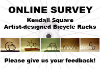 Bike Survey