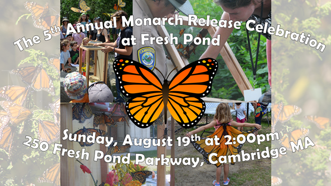 Sunday August 19th is the Butterfly Release