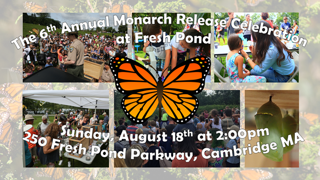 Butterfly Release on Sunday August 18th at 2PM
