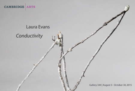 Laura Evans, Conductivity