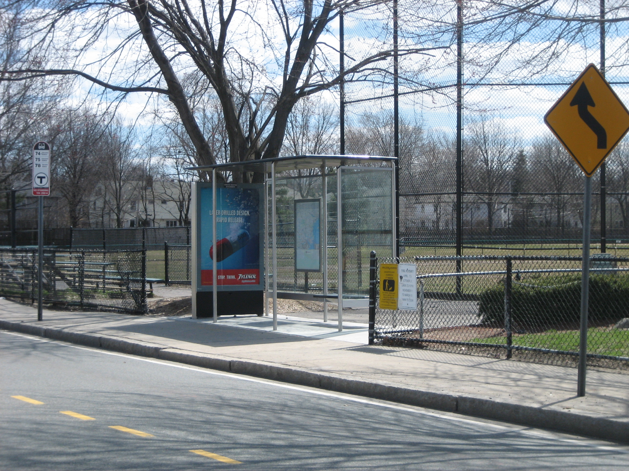 Cemusa bus shelter on Concord Avenue at the playing fields behind the armory.