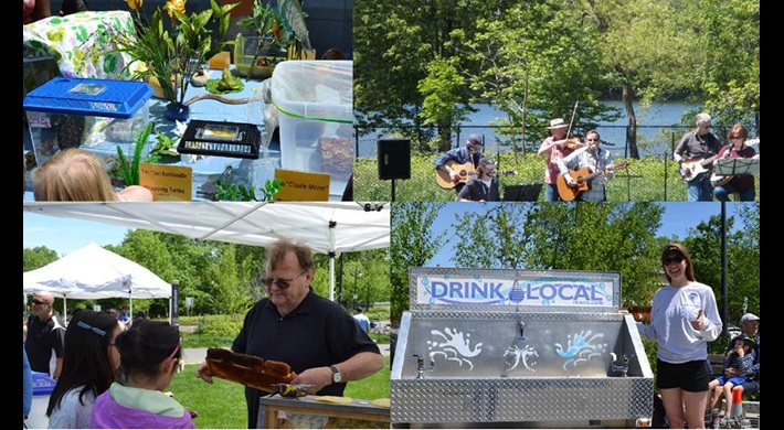 Wildlife, music, education, and water fun happening at a past Fresh Pond Day
