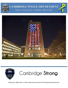 2013 ANNUAL CRIME REPORT