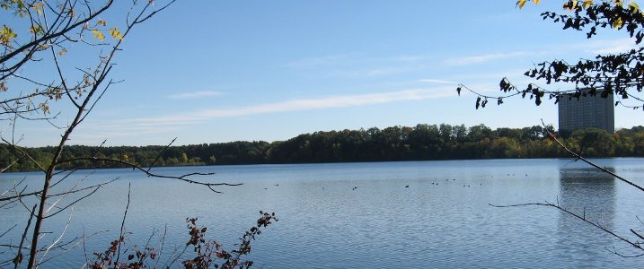 View overlooking Fresh Pond Reservoir.