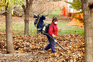 Using a leaf blower