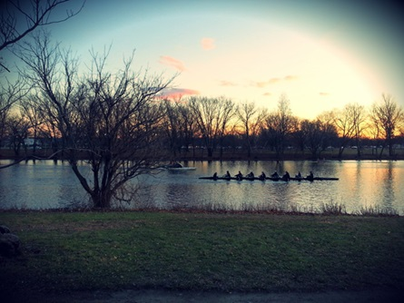 Rower on Charles River at Dusk