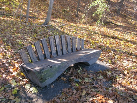 Ryerson Bench at Fresh Pond