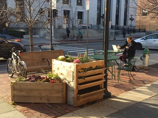 Flower box benches in Central Square