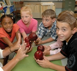 photo of kids with apples