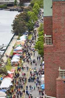 An overhead shot of a crowd at the River Festival