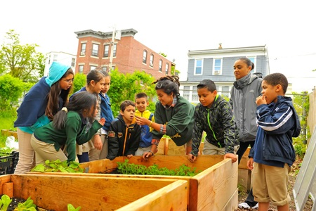 Green City Growers with Artist Mark Cooper and The Moses Youth Center: Urban Agriculture and Sculpture Hub.