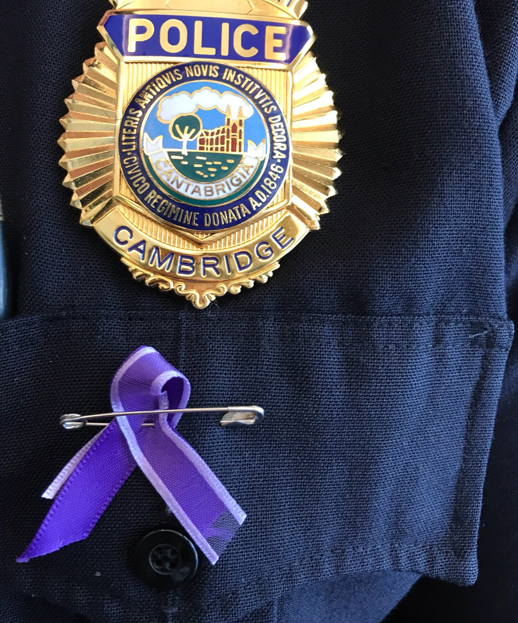 Domestic Violence Awareness Month Ribbon