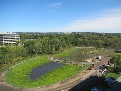Main wetland basin looking west to east_September 19 2012