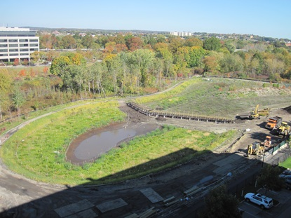 Wetland basin_looking east_October 18 2012