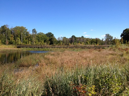 Wetland Basin and Boardwalk1_September 2013