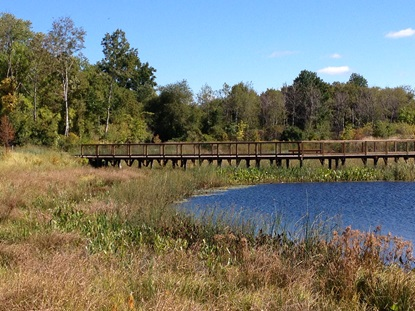 Wetland Basin and Boardwalk2_September 2013