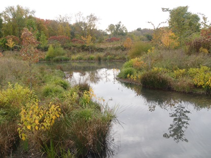 Oxbow Opening to Little River_October 15 2013