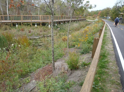 Vegetated Swale_October 15 2013