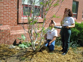 Planting a tree for Arbor Day