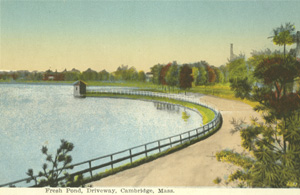 Drawing of the Olmsted pathway along Fresh Pond, Early 1900s.