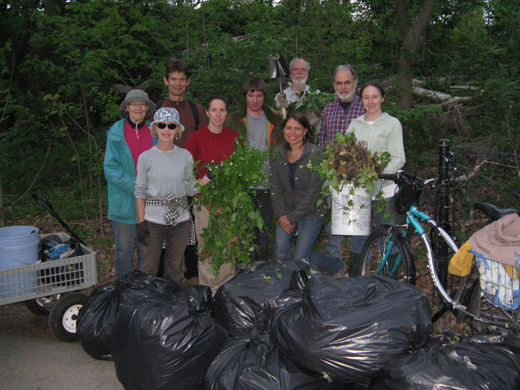 Volunteers and bags of weeds